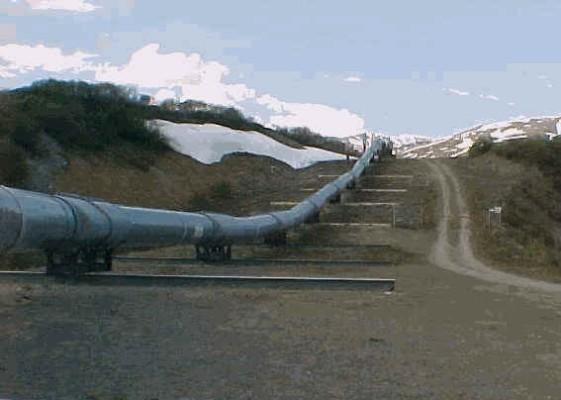 Трансаляскінський нафтопровід у США.